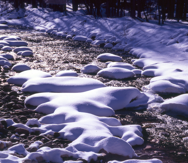 Snow Covered Boulders in the Dolores River.