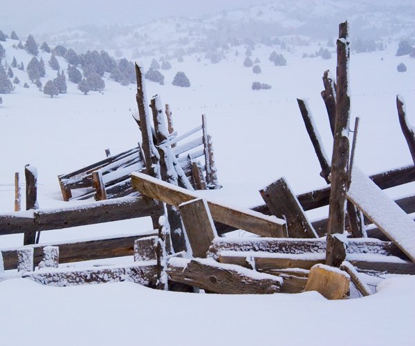Corral in Winter