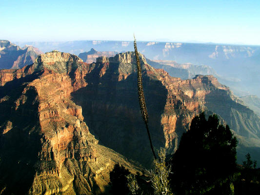 Point Sublime North Rim Grand Canyon National Park